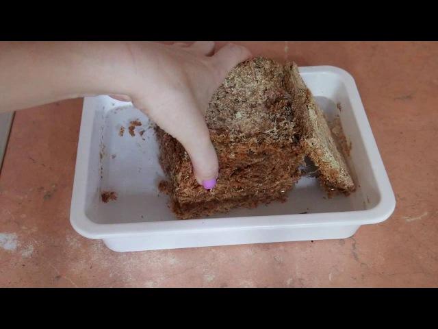 Мох Размачиваем мох заказанный у Швертера