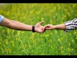 Ахмедияр Раушан история любви г.Тараз