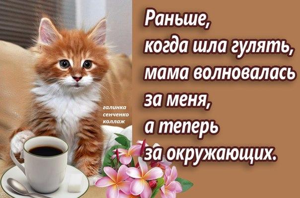 https://pp.vk.me/c630516/v630516864/33c0f/KR0v4PLfPP4.jpg
