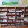 Modelnaya-Biblioteka Tatyshlinsky-Rayon