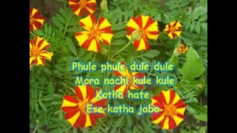 Учим песни Шри Чинмоя. Phule phule с субтитрами