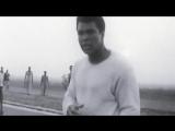 Muhammad Ali Tribute - The Memory #RIPAli