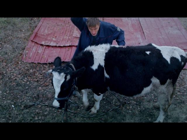 Бородач: Как разделать корову с помощью танка