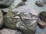 Странный камень на заливе у средневекового замка Бальга.