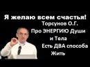 Торсунов О.Г. Про ЭНЕРГИЮ Души и Тела. Есть ДВА способа Жить.