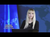 Сводка новостей: Новороссия, Сирия, мир / 24.02.2016