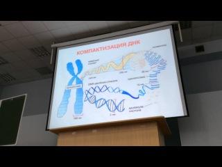 Матричные биосинтезы vfnhbxyst ,bjcbyntps
