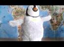 Пингвин танцующий самбу и чечетку