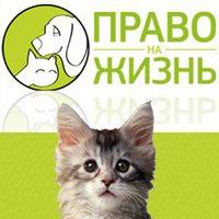 pravo_na_zhizn
