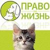 """""""ПРАВО НА ЖИЗНЬ"""" Помощь животным. Воронеж"""