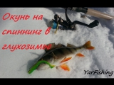Окунь на спиннинг в глухозимье р.Векса / Perch on a spinning winter