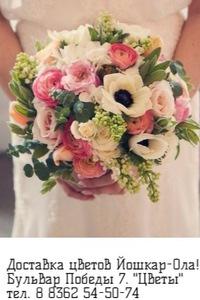 Где купить цветы в йошкар оле заказ цветов сургут