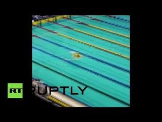 Мужчина с надувным кругом-уточкой прыгнул в бассейн на чемпионате России по плаванию