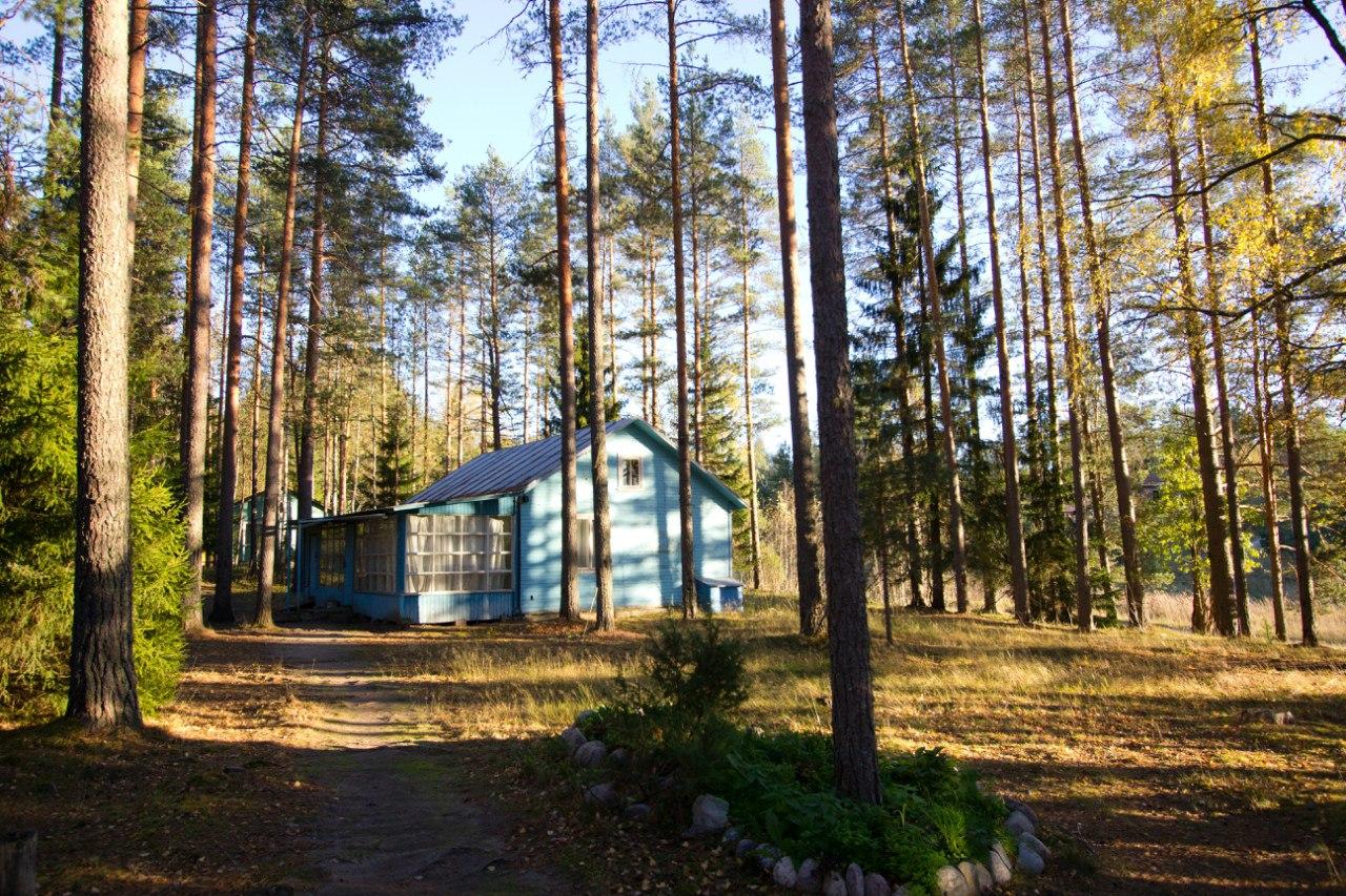 """База отдыха """"Заветное"""" на берегу озера в Карелии"""