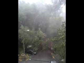 Ураган 04-07-2016 Люберцы двор Митрофанова НАЧАЛО №2