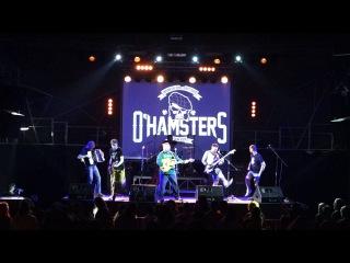 "O'Hamsters - Свати і Бояри (Live at ""Bingo"" club, Kiev, 09.04.2016)"