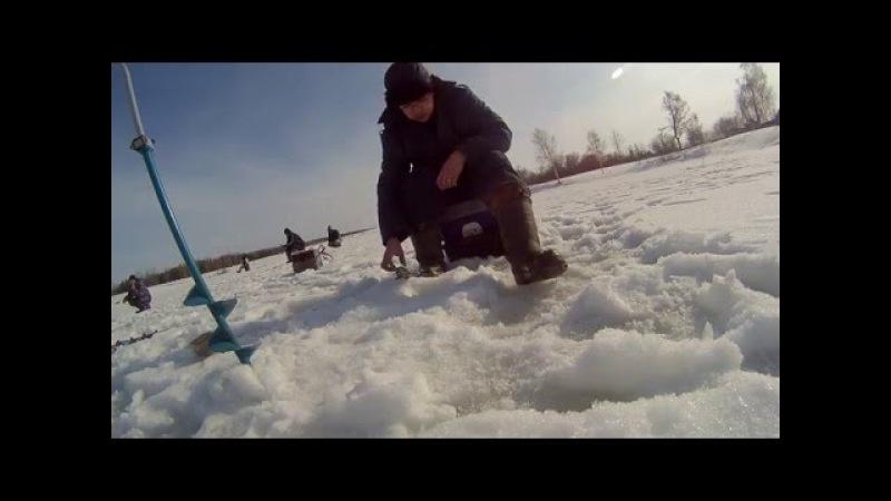 ЧР, Мариинско-Посадский р-н, д. Сюндюково. 06.03.16. Отчет о рыбалке.