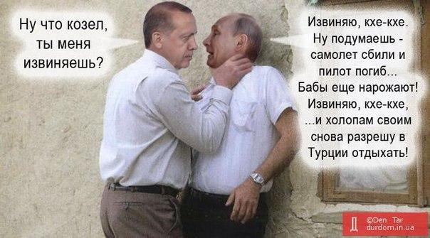 Эрдоган рассчитывает встретиться с Путиным в середине августа - Цензор.НЕТ 2386