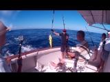 Экскурсии в Доминикане - Рыбалка в Доминикане!