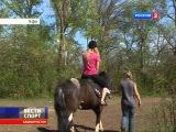 Уфимская конная школа Золотая подкова