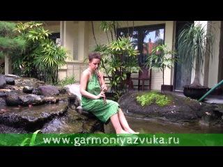 Пимак в Фа-диез из палисандра на Бали