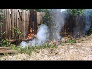 Пожар на территории в/ч. Возгорание тополиного пуха