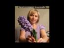 «Со стены друга» под музыку Песня про учителя - мой добрый учитель,ну что ж Вы молчите?.