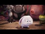 Забавный проморолик мультфильма #Тайная_жизнь_домашних_животных  Он называется: