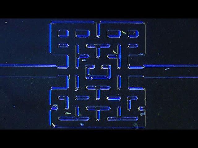 Mikroskopisk Pacman / Microscopic Pacman