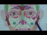 Проекционные зоны органов на лице - поясняет Ольга Гуреева