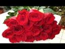 Доставка Роз в Новосибирск. Роза Гран При