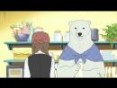 Shirokuma Cafe | Кафе «У Белого Медведя» 50 серия