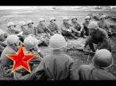 Соловьи Песни военных лет Лучшие фото Соловьи соловьи не тревожте солдат