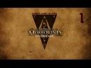 The Elder Scrolls Overhaul 1 серия Безымянный герой
