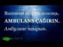 Турецкий язык: Помощь в Экстренных Ситуациях! | Урок 15