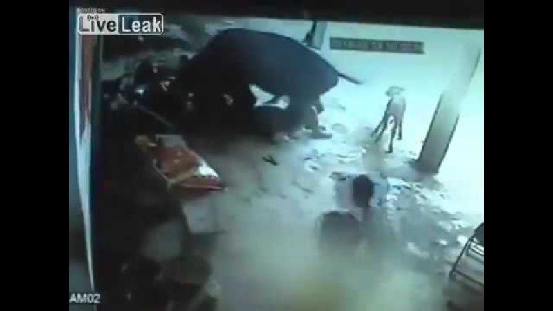 LiveLeak com Honor Killing Cow Attacks Two Men who Stabbed and Killed Minor Girl