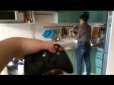 Как научить девушку готовить [360p]