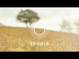 Kasper Bjorke (ft. Sisy Ey) - Apart (Michael Mayer Remix)