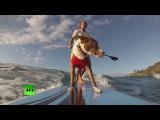 В Австралии собаки показали мастер-класс по серфингу