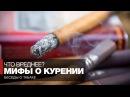 Мифы о вреде курения Курение сигарет трубки сигар что вреднее