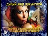 Новогоднее цирковое шоу