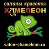Салоны красоты ''Хамелеон'' в Туле