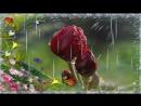 ♥-Красивая песня- ♥-MANELE ROMANESTI