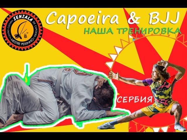 Capoeira and Brazilian Jui Jitsu   убийственная Тренировка Новичков   Мечтатели 11