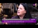 Боржники Житомиргазу : жінка відбивалася від газовиків камінням