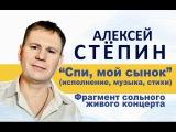 Алексей Стёпин (Alexey Stepin) - Спи, мой сынок (live)