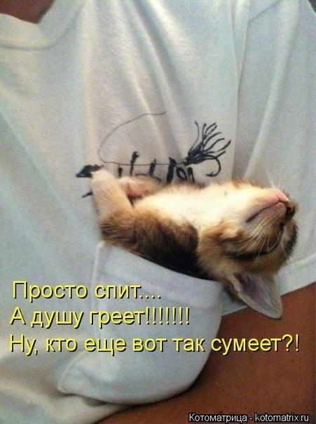 http://cs630528.vk.me/v630528194/199cf/DyISoAjRdxY.jpg