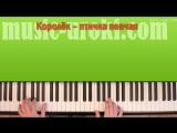 Королек птичка певчая на фортепиано