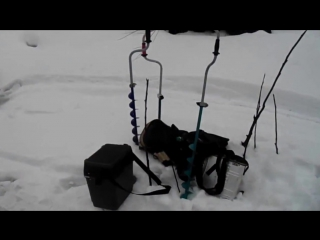 Хариус зимой в Архангельской области