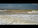 Жёлтое Чёрное море в Крыму